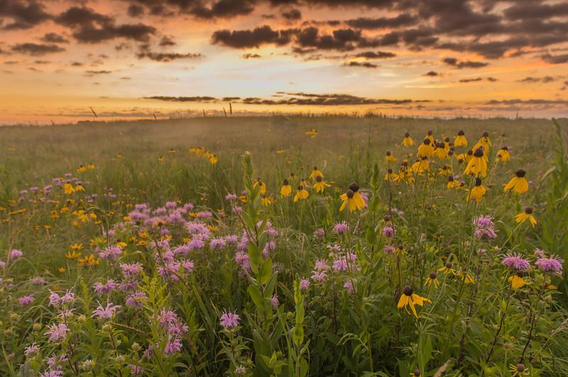 Prairie rising sun