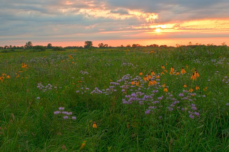 MNPR-11061H Prairie sunrise