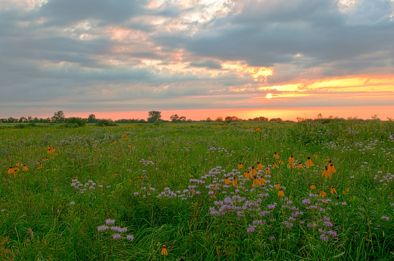 MNPR-11063H: Sunrise on Schaefer Prairie