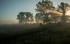 MNPR-13-157: Morning prairie sun beam