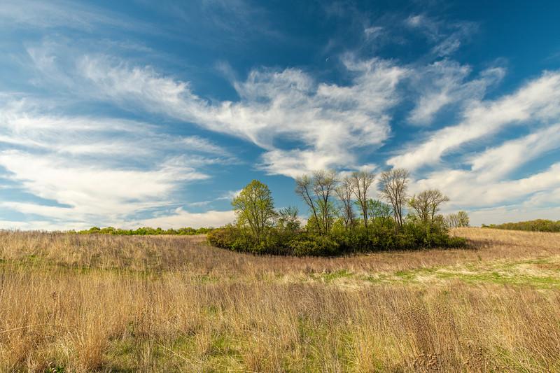 Prairie greening up