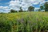 MNPR-13-67: Clouds on the prairie