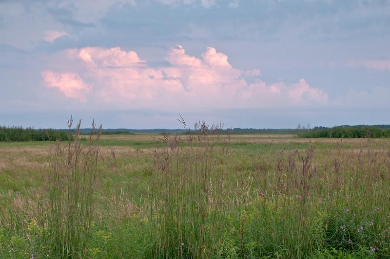 MNPR-11071: Big Bluestem grasses and storm clouds over Crex Meadows WMA