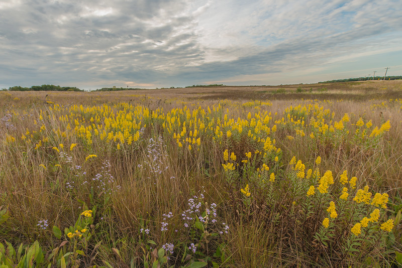 September in the prairie