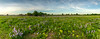 Sherburne NWR panoramic