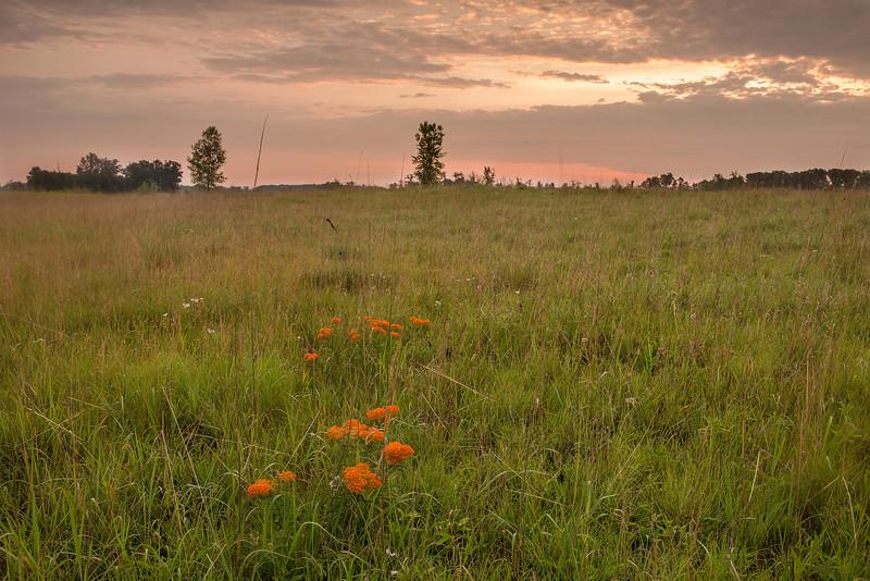 MNPR-13-45: Prairie sunrise at Sherburne NWR