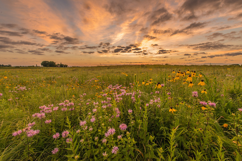 Morning clouds on the prairie