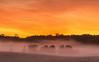 Sunrise morning fog