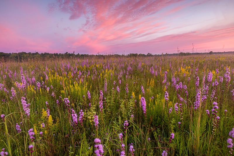Prairie twilight