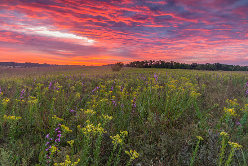 Red Sky over the prairie