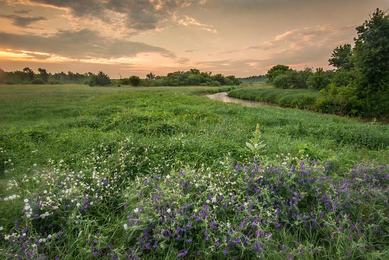 MNPR-13-48: Sunrise on the prairie