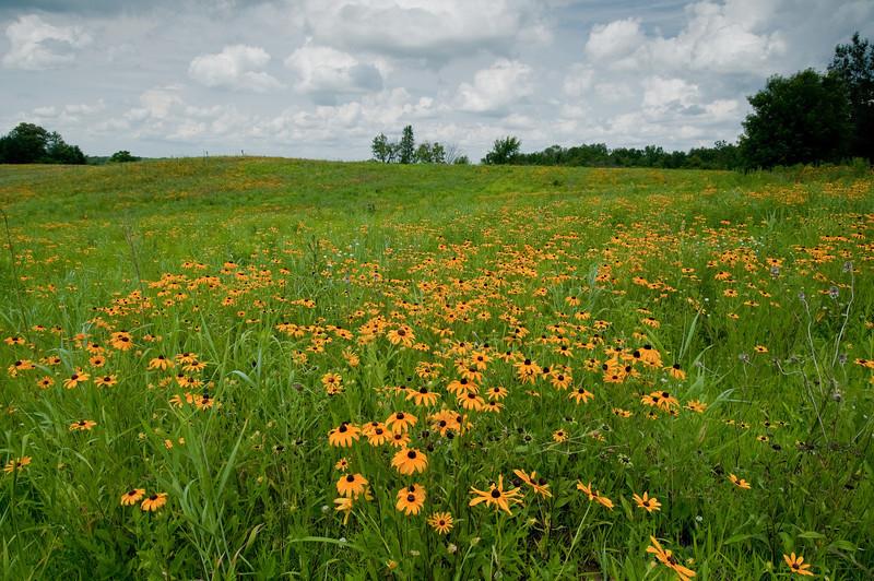 MNPR-10017: Crow-Hassan Prairie