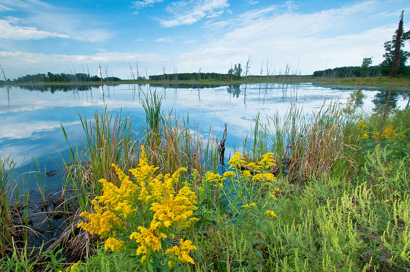 MNPR-11083: Prairie meets wetland