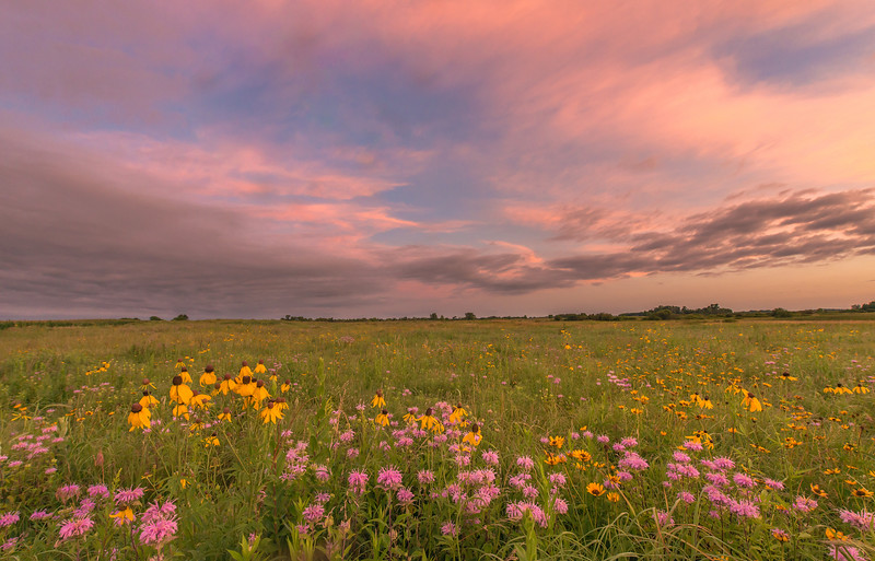 Twilight at Schaefer Prairie