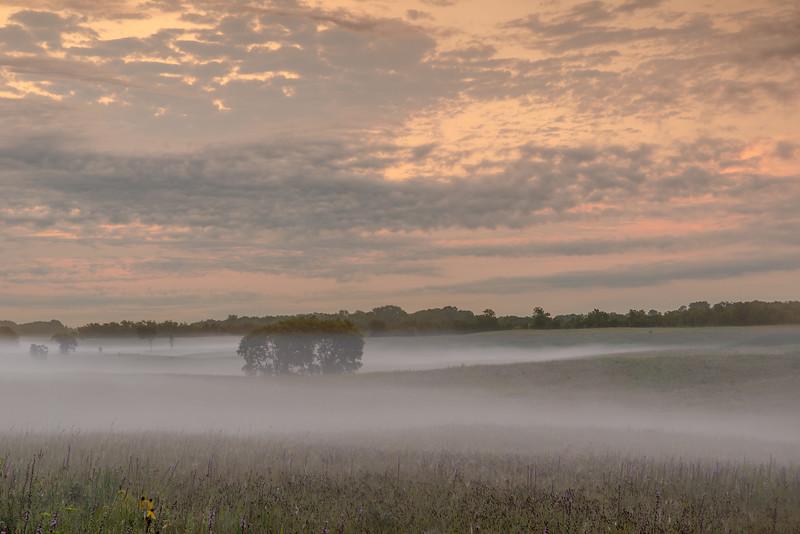 Morning fog on the prairie