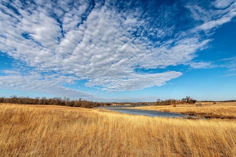 Oak-Savanna Prairie in spring