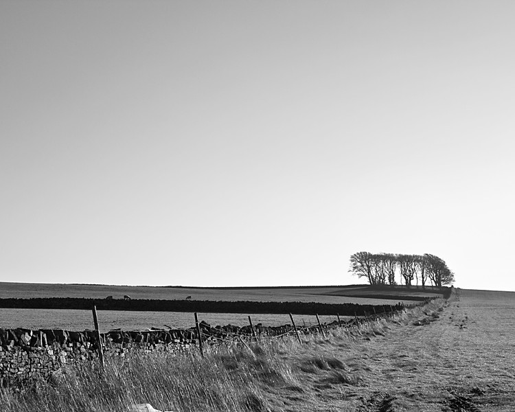 Between Barnard Castle and Kininvie in Co. Durham