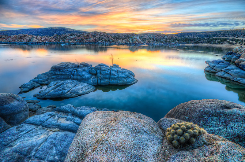 Sunrise Cactus at Watson Lake in Prescott