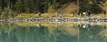 Lake Louise Shore Reflections
