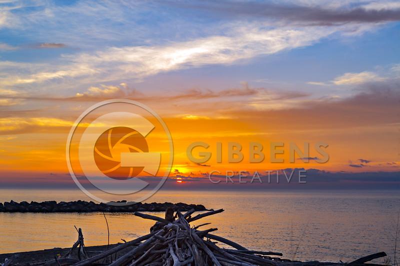 PI Sunset Wood Pile Before