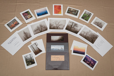"Large art cards come in packages of 3, 4, or 5 cards. Folios contain 5 to 10 prints on 8.5' x 11"" archival print paper. All are printed by S. William Bishop."
