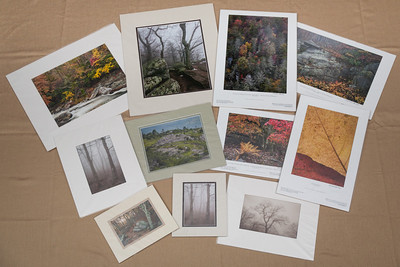 Prints are available in sizes 5x7 up to 16x24 and matted prints are available in sizes 8x10 up to 16x20.  All are printed and matted by S. William Bishop.