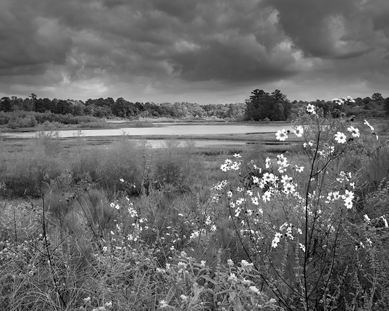 InfraRed - Spring Creek Nature Trail