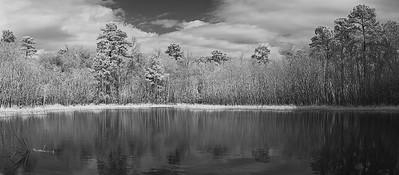 20210118-Spring-Creek-Trail-196-Pano-Edit-copy