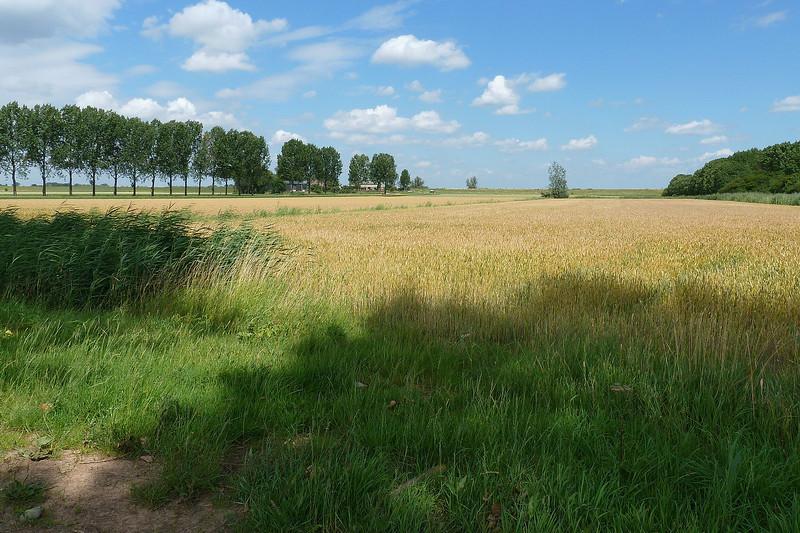 Munnikenland2