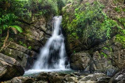 La Mina Falls, El Yunque National Rain Forest Puerto Rico