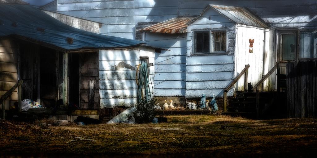 Backyard Pulaski