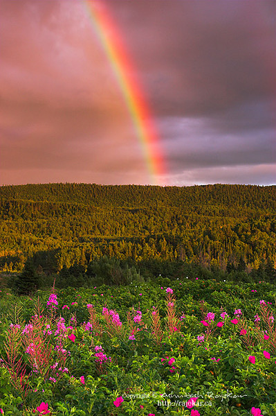 Rainbow over Parc National du Bic