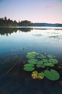 Lac La Pêche (Gatineau Park)