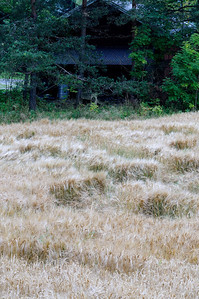 Lindeijer_2012-09-10_183934_01