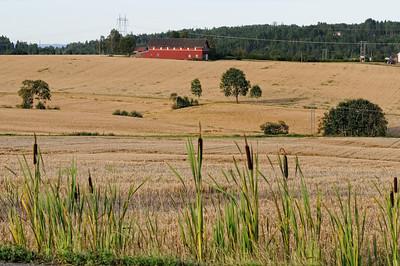 Lindeijer_2012-08-27_183526