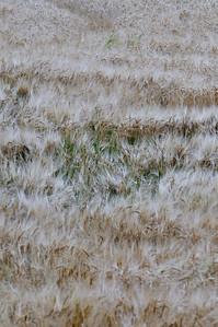 Lindeijer_2012-09-10_183202