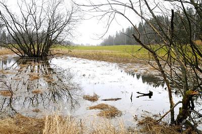Lindeijer_2012-11-17_143521