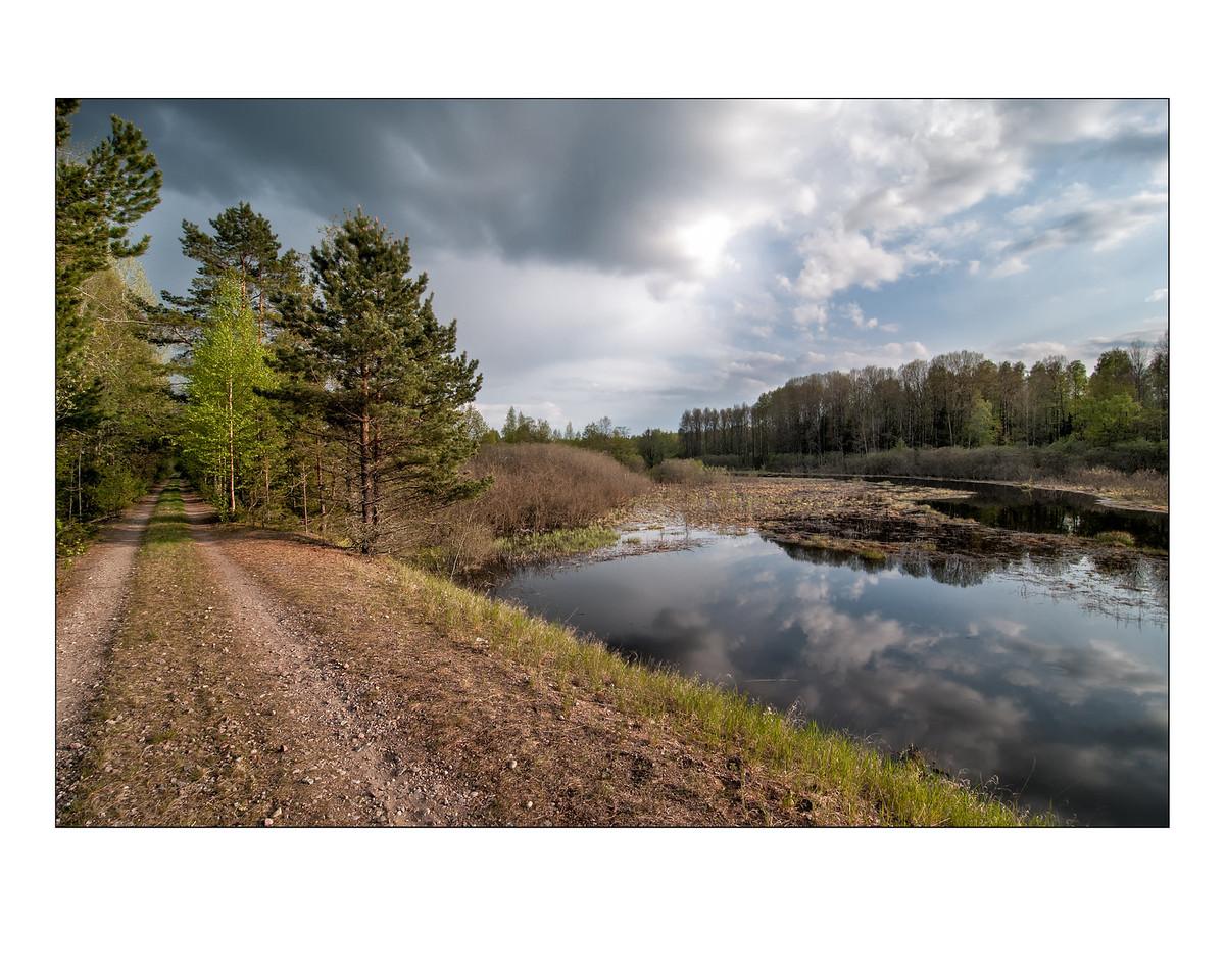 Hedesundafjärdens Naturreservat