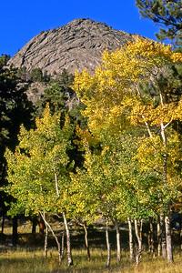 Aspen 2 at Deer Mtn 645  6x9