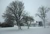 april_snow42