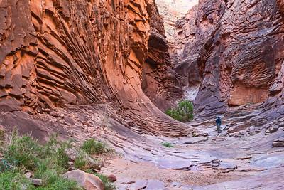 North Canyon 2