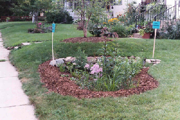 Rain Gardens: Photos by Dave Stack