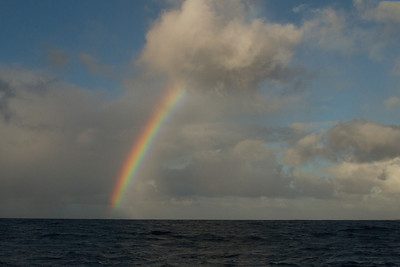 Rainbow Highlights Horizon