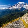 3367  G Rainier and Trail