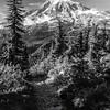 3375  G Rainier and Trail Sharp BW V