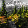 3377  G Rainier and Trail Sharp Selective Color V
