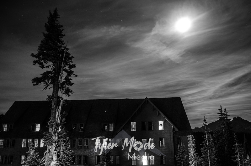 3440  G Paradise Inn Night Sharp BW
