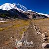 2463  G Rainier and Trail