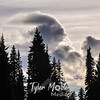 1952  G Cloud Shape