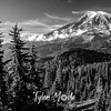 3393  G Rainier View Sharp BW